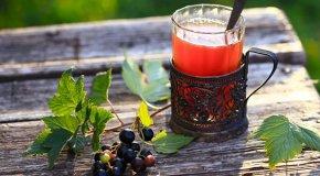 Чай с черной смородиной – полезные свойства и вред