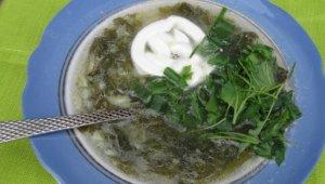 Суп из сныти – 3 неожиданно полезных рецепта