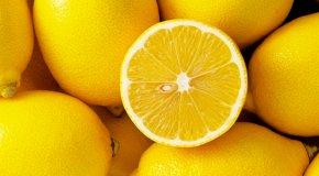 Как выбрать лимон – признаки спелого фрукта