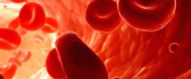 Густая кровь – что делать? О питании при густой крови