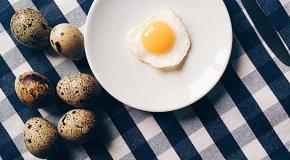 Перепелиные яйца – польза, вред, норма употребления