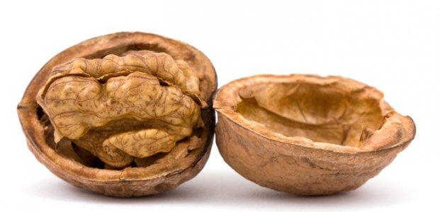 Грецкий орех – польза, вред и противопоказания ореха