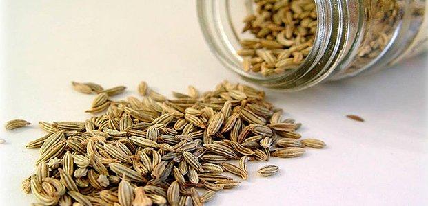 Семена укропа – польза и полезные свойства семян укропа