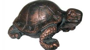 Черепаха по фэн-шуй — символ мудрости
