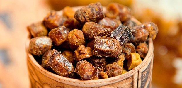 Перга пчелиная – лечебные свойства и противопоказания