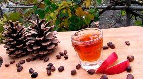 Кедровая настойка — польза, вред и рецепты приготовления
