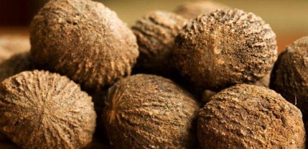 Черный орех – польза и полезные свойства