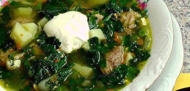 Рецепты борща с щавелем — вкусные и полезные супы