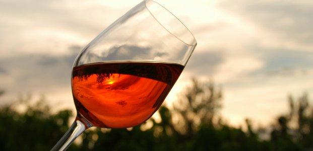 Красное вино – польза, вред и состав