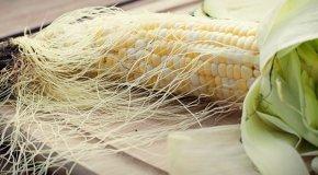 Кукурузные рыльца – полезные свойства и противопоказания