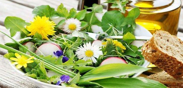 Салат из одуванчиков – полезные рецепты