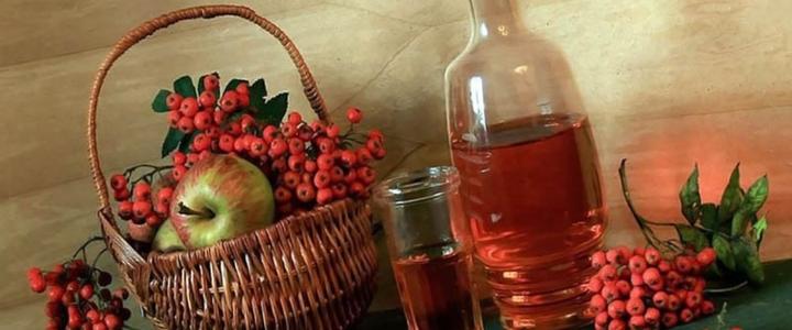 Вино из рябины в домашних условиях