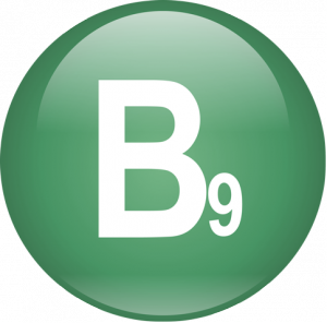 Польза витамина B9
