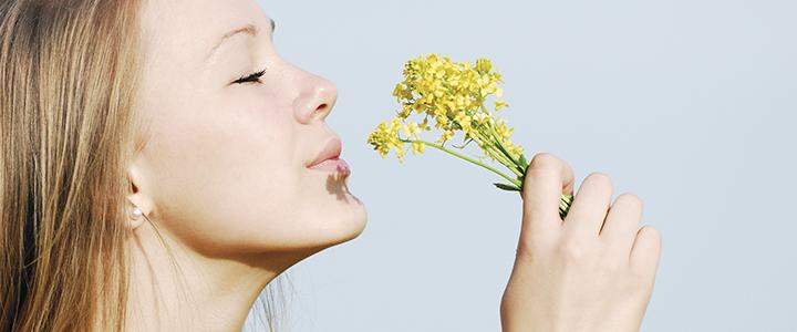Аллергия на цветение – куда уехать