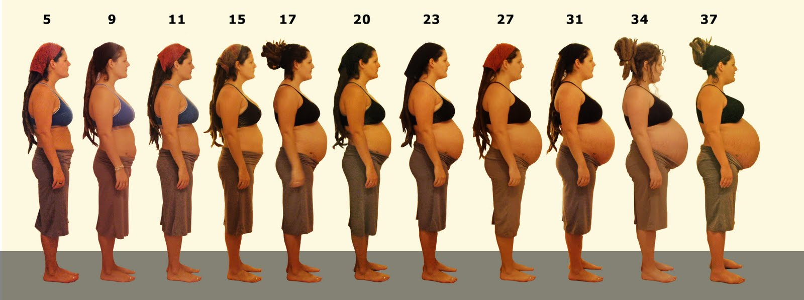 Беременность по неделям-двойня