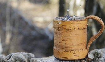Березовый сок – состав, полезные свойства и противопоказания