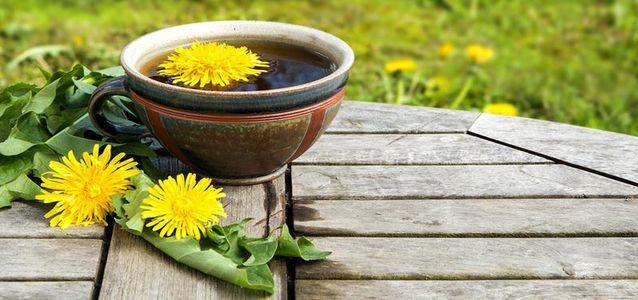 чай из цветков одуванчиков