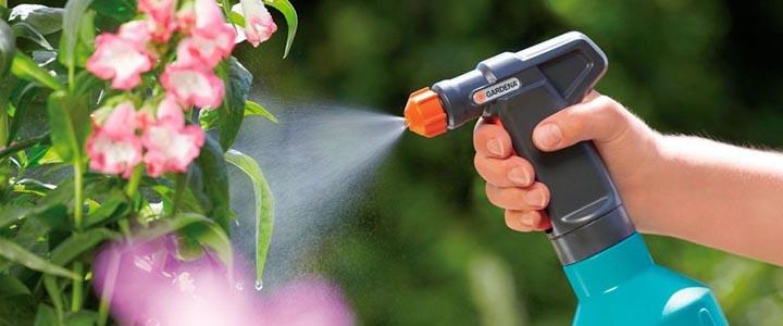 Как опрыскивать плодовые деревья