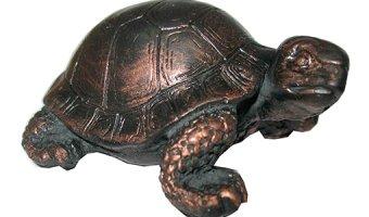 Черепаха по фэн-шуй – символ мудрости