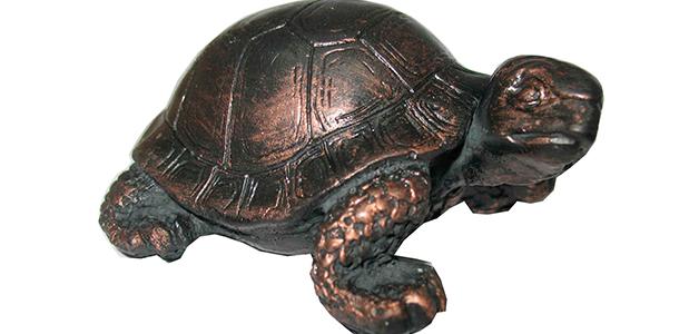 Черепаха по фэн-шуй - символ мудрости