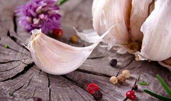 Чеснок – польза, вред и лечебные свойства
