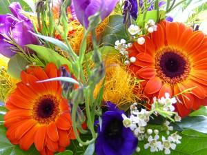 Цветы в губке