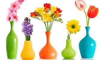 Увеличиваем жизнь цветам в вазе – как сохранить цветы дольше