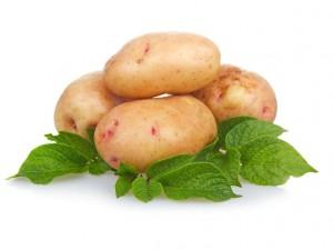 картофель при экземе