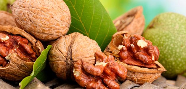 Народные рецепты лечения эрозии желудка