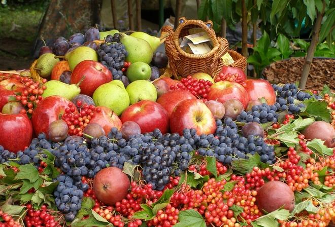 Какие фрукты в Крыму в июне
