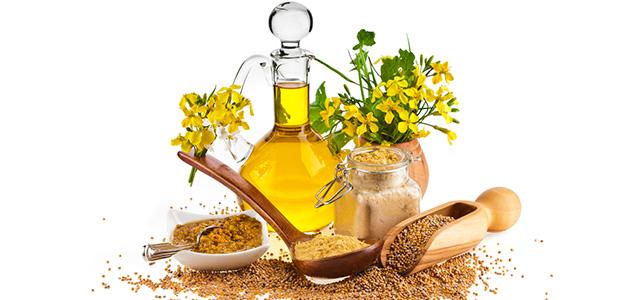 Горчичное масло полезные свойства
