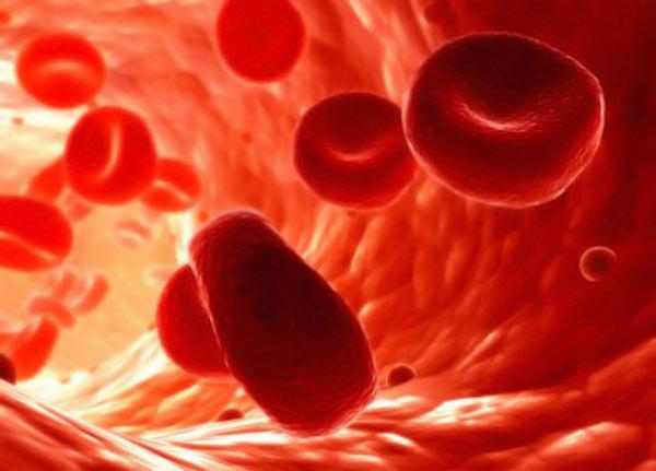 повышенный показатель холестерина в крови