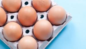 Полезные свойства белка из куриных яиц