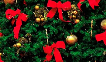 Как украсить елку оригинально – идеи для Новогодней красавицы