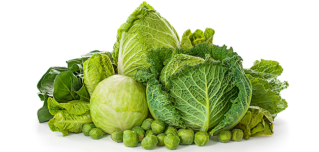Капуста - польза, вред и лечебные свойства овоща