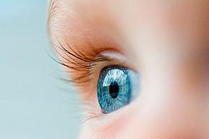 Народные рецепты от катаракты