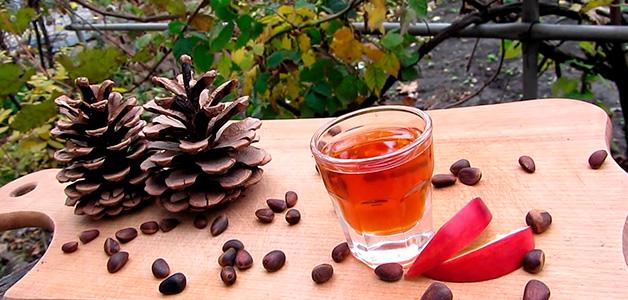 Кедровая настойка - польза, вред и рецепт приготовления