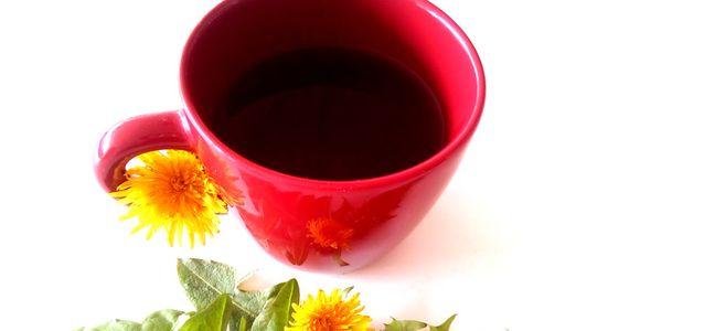 кофе из одуванчиков в домашних условиях