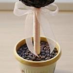 кофейный топиарий 13