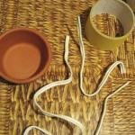 топиарий из кофе 4