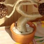 топиарий из кофе 10