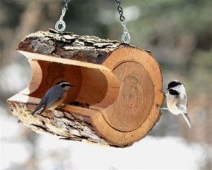 Кормушка для птиц фото оригинальные идеи