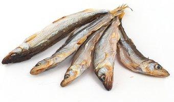 Корюшка – польза, вред и правила хранения рыбки