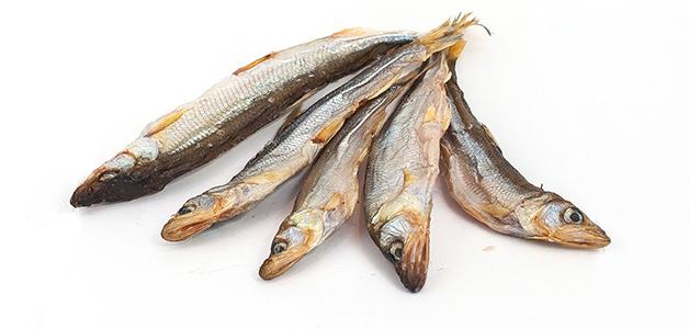 Корюшка - польза, вред и правила хранения рыбки