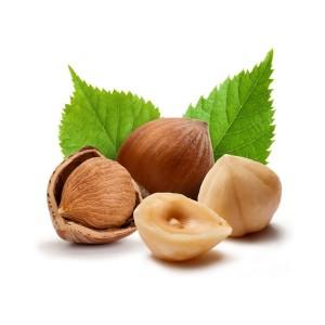 Польза лесного ореха