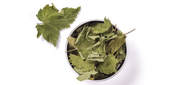 Польза листьев смородины