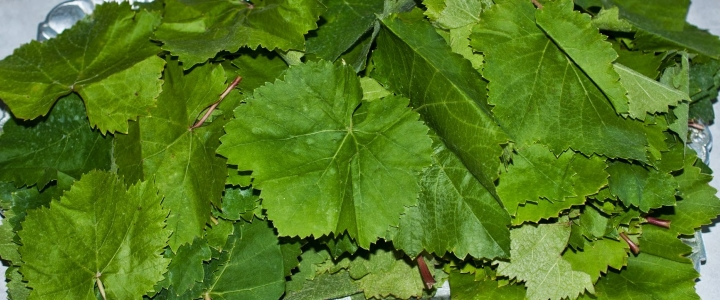 Замороженные виноградные листья на зиму