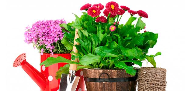 Лунный календарь садовода на апрель 2016 года