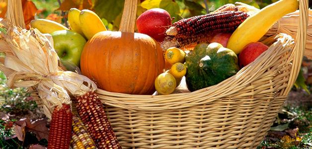 Лунный календарь садовода-огородника на сентябрь 2016 года