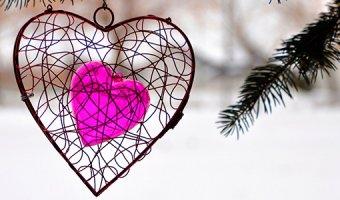 Любовная совместимость знаков Зодиака – гороскоп любви